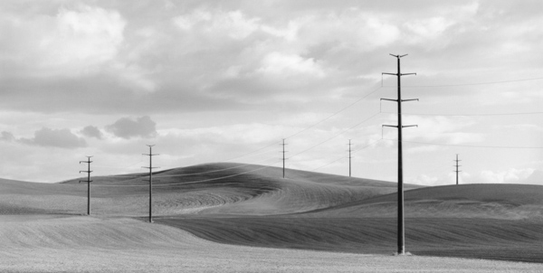 """""""Powerlines."""" © Brian Kosoff"""