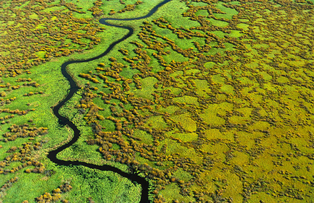 Wetlands in Alberta, Canada. ©Garth Lenz
