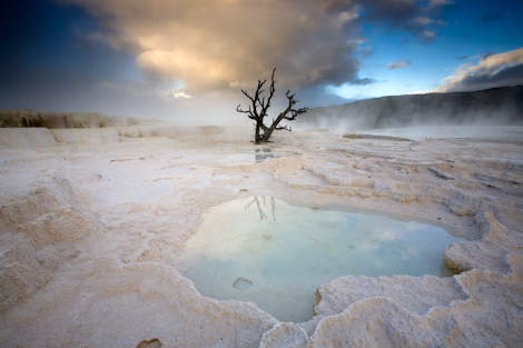 Mammoth Hot Springs, Yellowstone National Park, Wyoming. ©Ian Shive