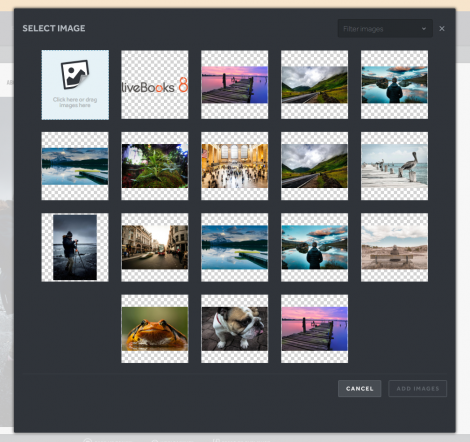 Easily swap out and customize images on your website.